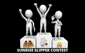 Slipper Contest Photo